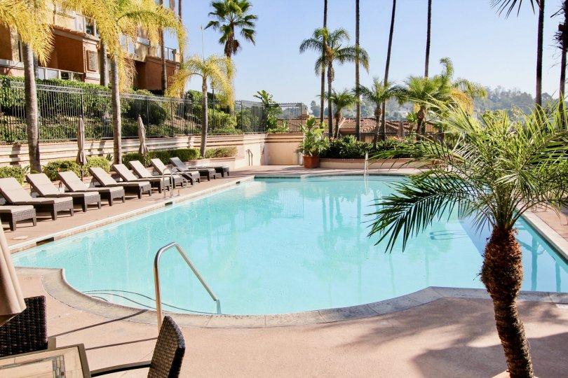 The great pool in La Vista, Laguna Niguel California