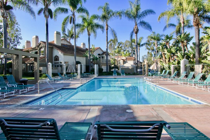 Very nice swimming pool with palm trees and sitting in Palm Court of Laguna Niguel