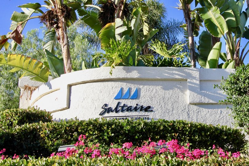 Nice spacious villa with palmtree in front of Saltaire of Laguna Niguel