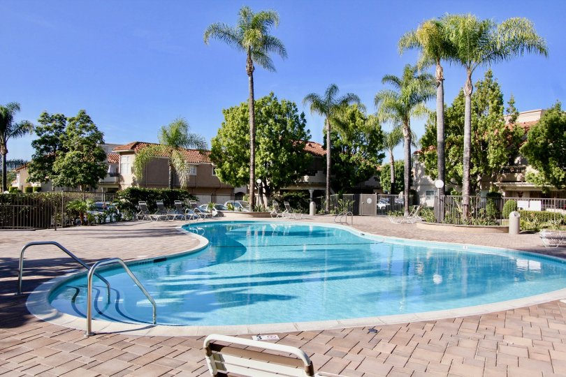 Beautiful Swimming pool with palm trees and villas around in Village Niguel Terrace II of Laguna Niguel