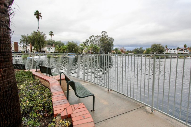 Stunning view of a lake with iron benches and iron fencing around it in Lake Forest Shores.