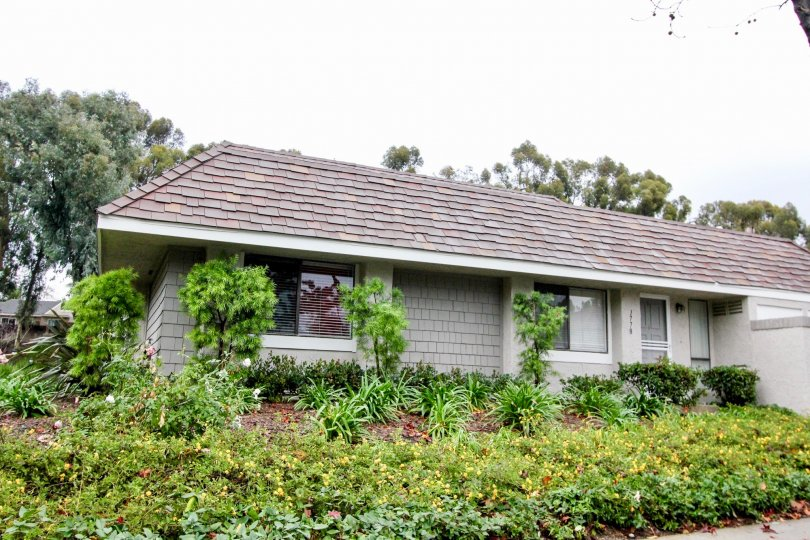 Charming, lush house in the Lakeside Park area of Lake Forest California