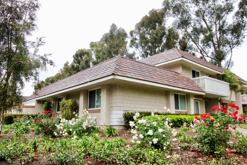 A Lake Forest house surrounded by flowers in bloom in Lakeside Park California.