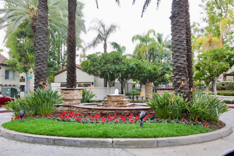 Entrance landscaping with majestic California date palms adorn the Ashton