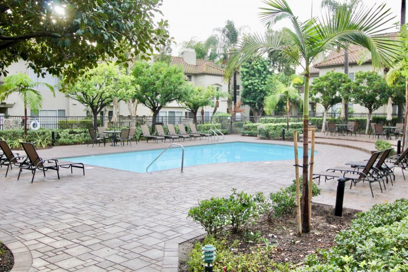 Nice Swimming Pool with trees and sitting place in Ashton of Mission Viejo