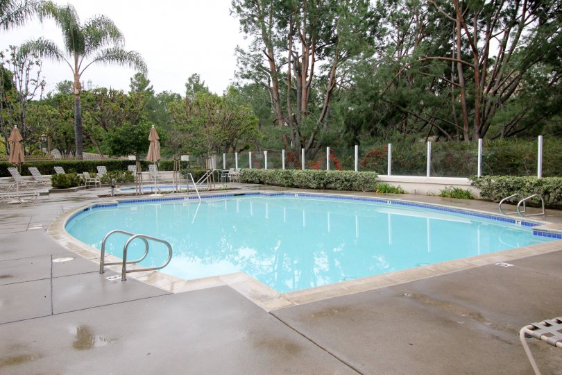 Super view of a swimming pool and relaxing chairs at the point in California Court.
