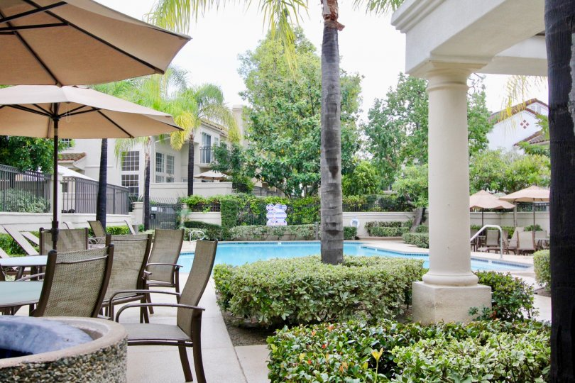 Swimming pool with table and chairs with umbrella in Greystone Califia.