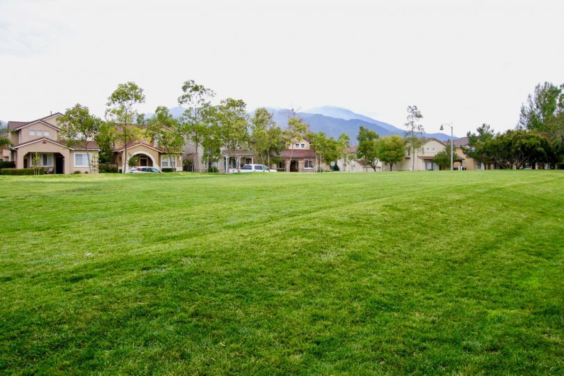 THE VILLAS IN THE MAGDALENA WITH THE GRASSLAND, CAR PARKING, TREES, PLANTS