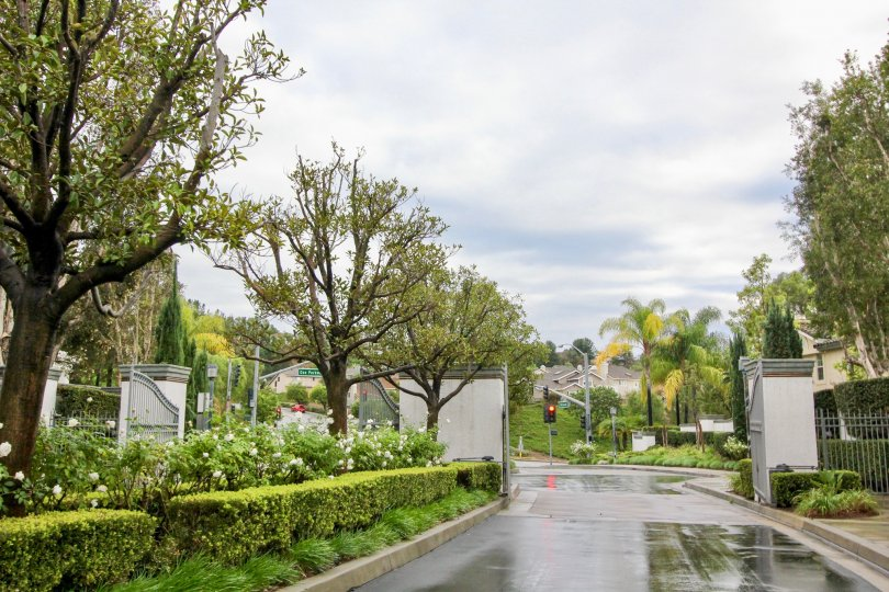 Mission Viejo is suburban in nature and culture. The city is mainly residential, although there are a number of offices and businesses within its city limits.