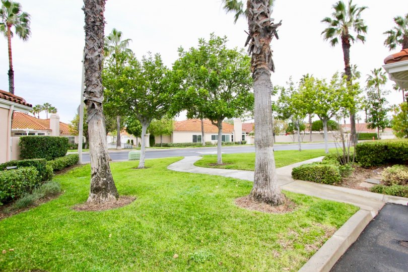 Well maintained landscaping at Palmia Court 2 in Mission Viejo, California.