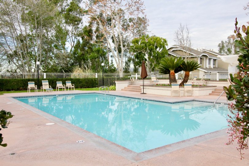 A swimming pool in club in mission Viejo city California state