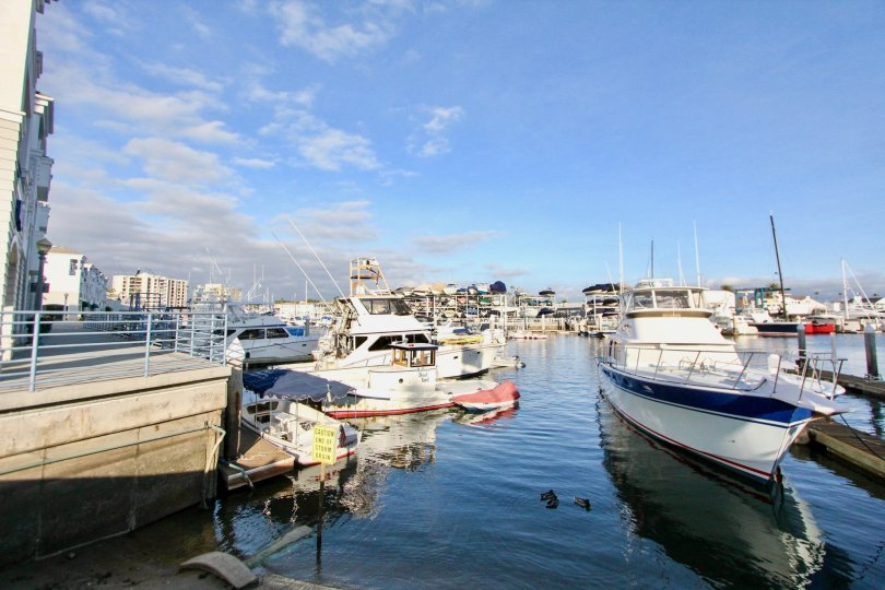 THE HARBOR IN THE 28TH STREET MARINA WITH THE SEA, BOAT, SHIP