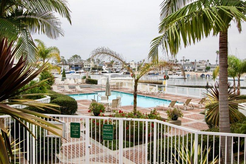 Beautiful swimming pool next to water at Bayside cove in Newport Beach CA