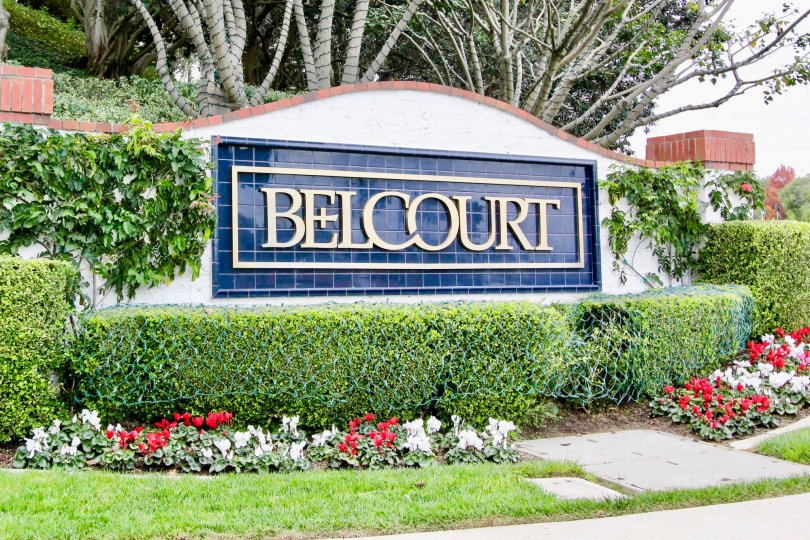 a warm day in the belcourt terrace with building that has name of belcourt and flowers