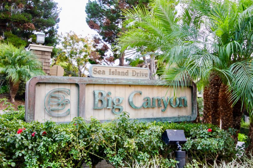 THE GARDEN IN THE BIG CANYON MCLAIN WITH THE SEA ISLAND DRIVE BOARD, PLANTS, TREES, LIGHT