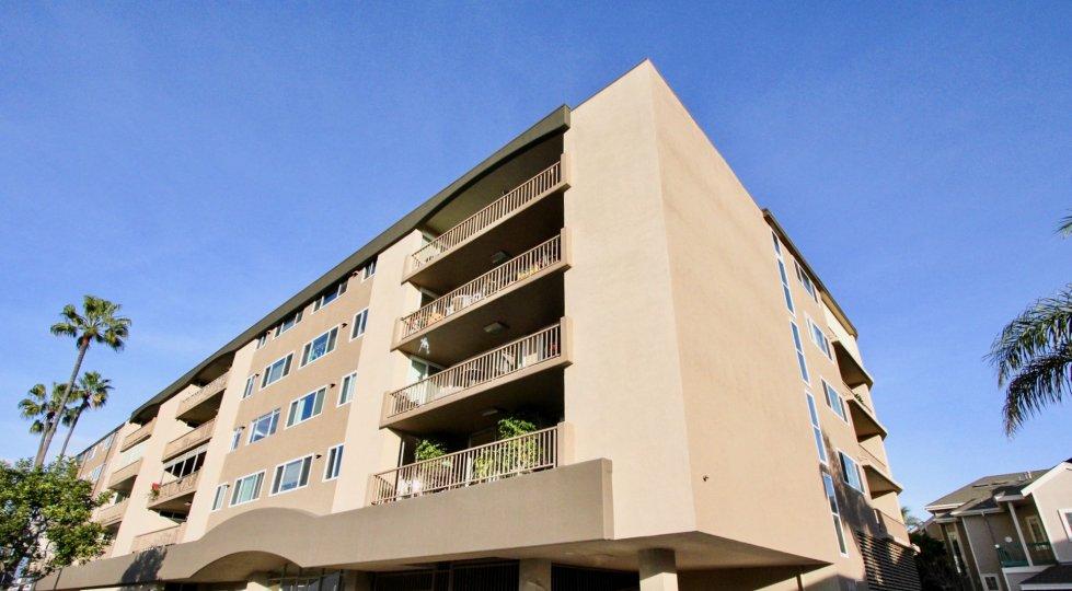 amazing at Newport Bay Towers in Newport Beach, California