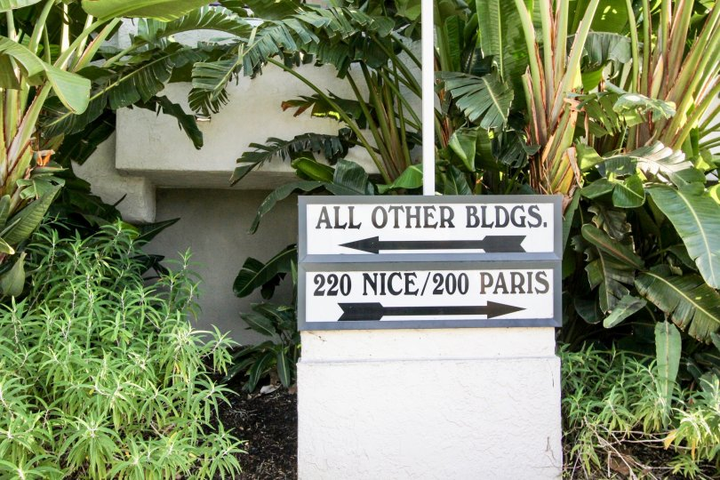 a warm day in the villa balboa with building that has named all other bldgs on numbered 220 nice/200 paris