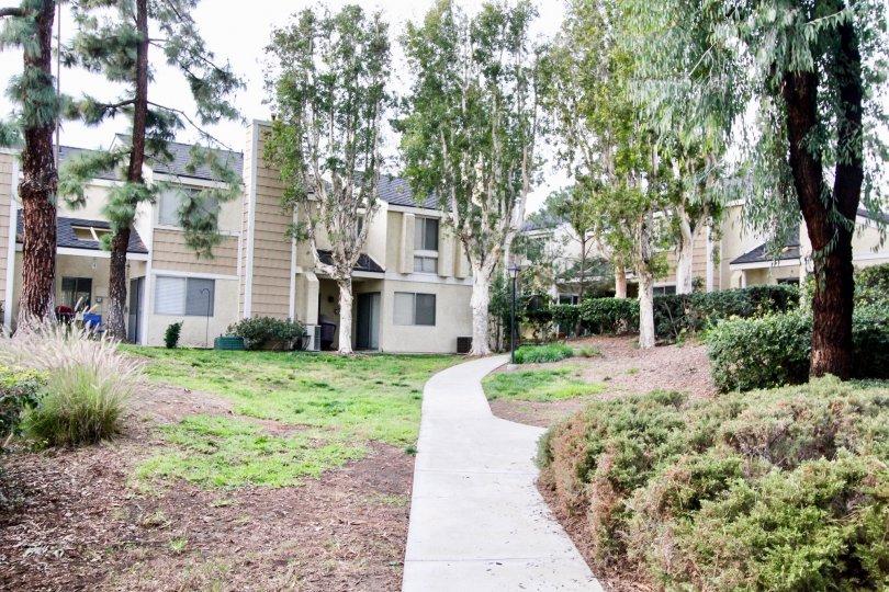 The beautiful landscaping at Arroyo Santiago in Orange, CA.