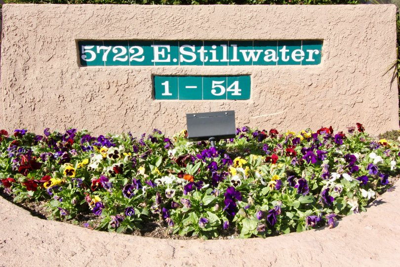 The sign for the Canyon Glen building with a assortment of flowers