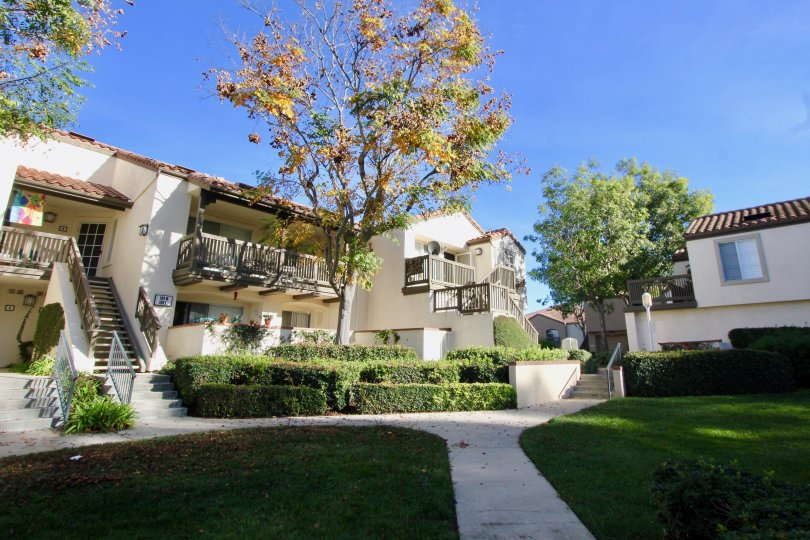 Canyon Hills House Building with Green Park Beautiful Location at Orange City in Califorina