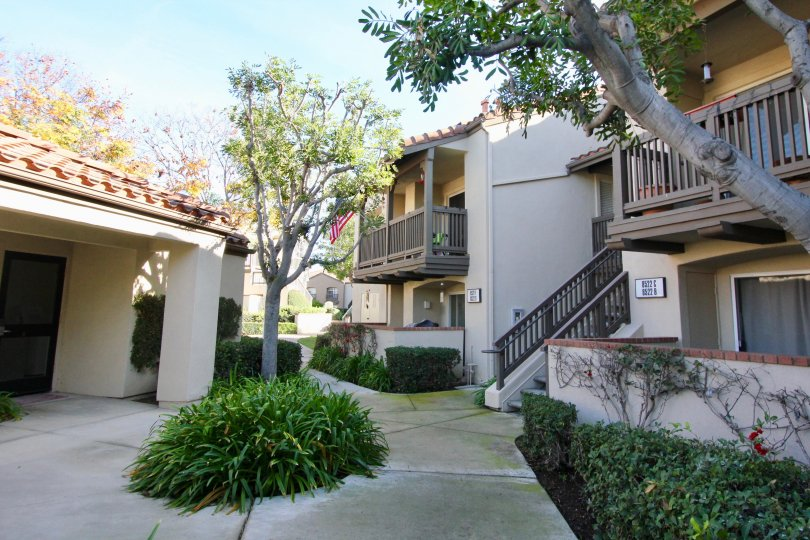 A home in the Canyon hills is very elegant homes with trees, plants, clean street and peaceful city.