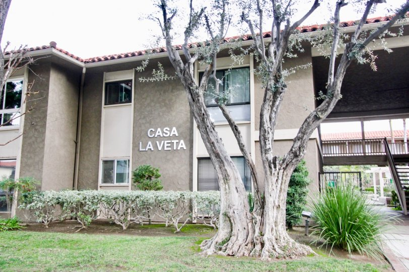 A weloming view of the Casa La Veta apartments in Orange City.