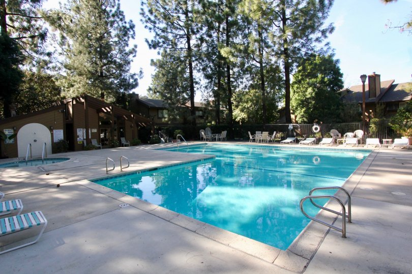 The pool with chairs and trees in Chapman Townhomes on a sunny day.