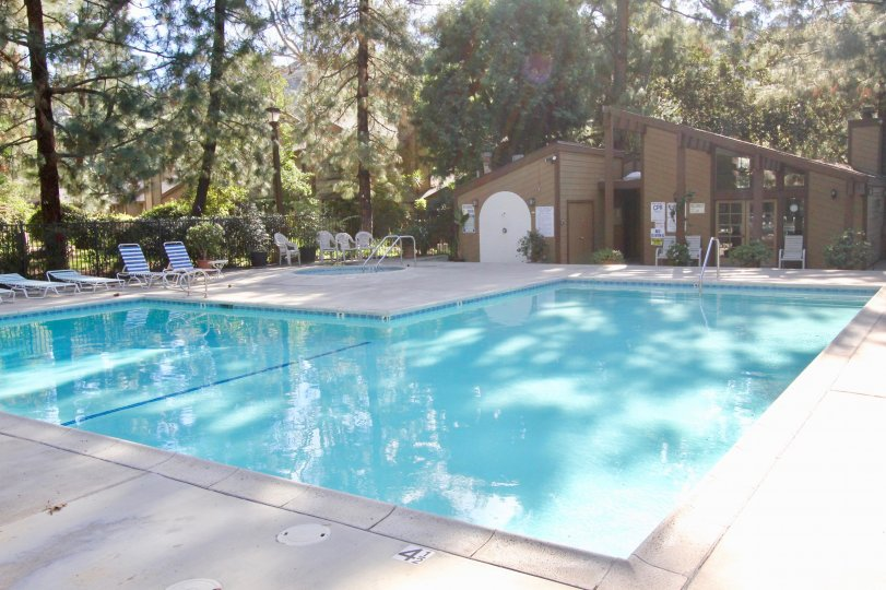 Swimming pool are present in Chapman Townhomes with seating chair and long trees and bushes