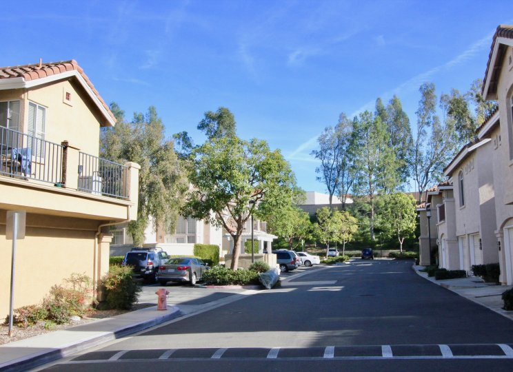The Montevista Condo Community in Orange California