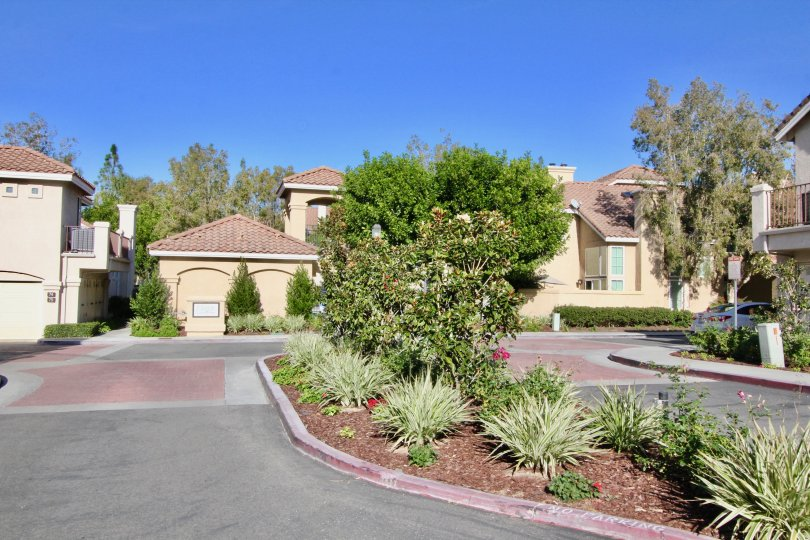 Lush, zero-lot premium home community in Orange County