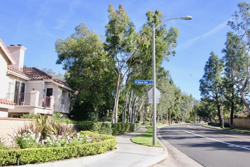 Winding road beside the Montevista community in Orange, California