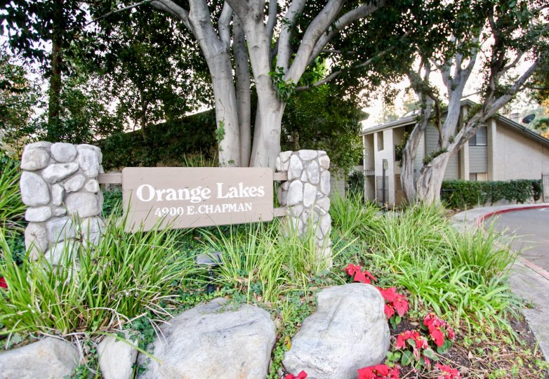 The orange lakes is like a gardening place with lots of green plants and row houses is nearby with big trees and flowers