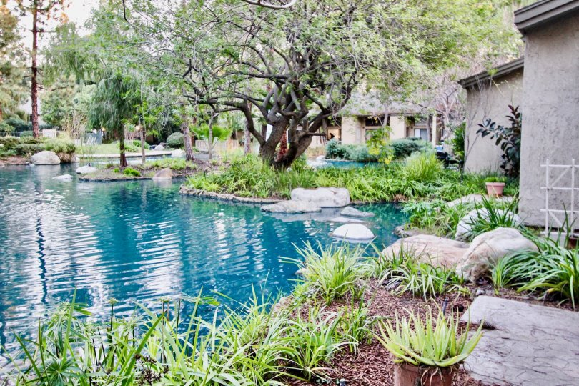 A elegant home in the orange lakes is like a park with trees and plants and also ponds.