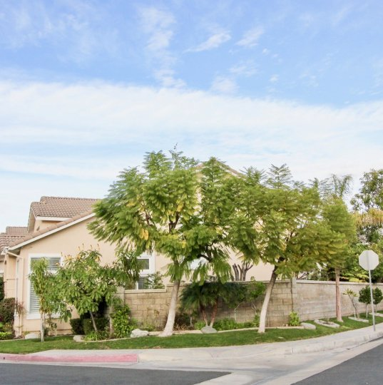A home in the sycamore crossing is very elegant homes with trees, plants, clean street and peaceful city.