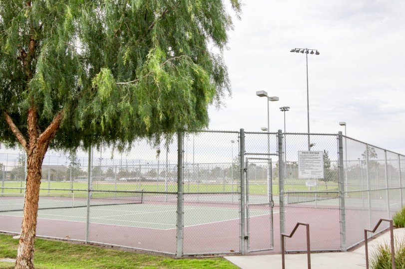 The tennis courts outside Timber Hill with a fence surrounding it