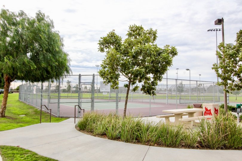 The tennis courts in Timber Hill surrounded by a fence and lights