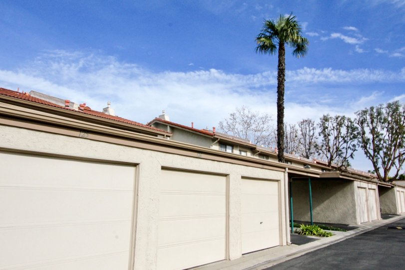 Garages in the Vista Monterey with palm trees on a sunny day.