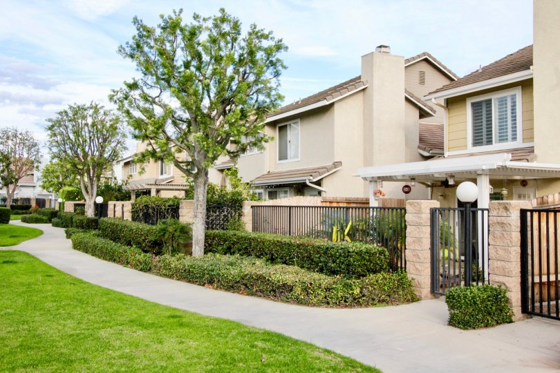 Homes with beautiful landscaping in the Vista Santiago community in Orange, California