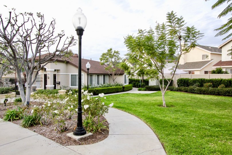 Westbury Building Attractive Beautiful Green Park Location at Orange City in Califorina