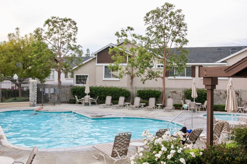 A house in Westbury community with a beautiful swimming pool and garden