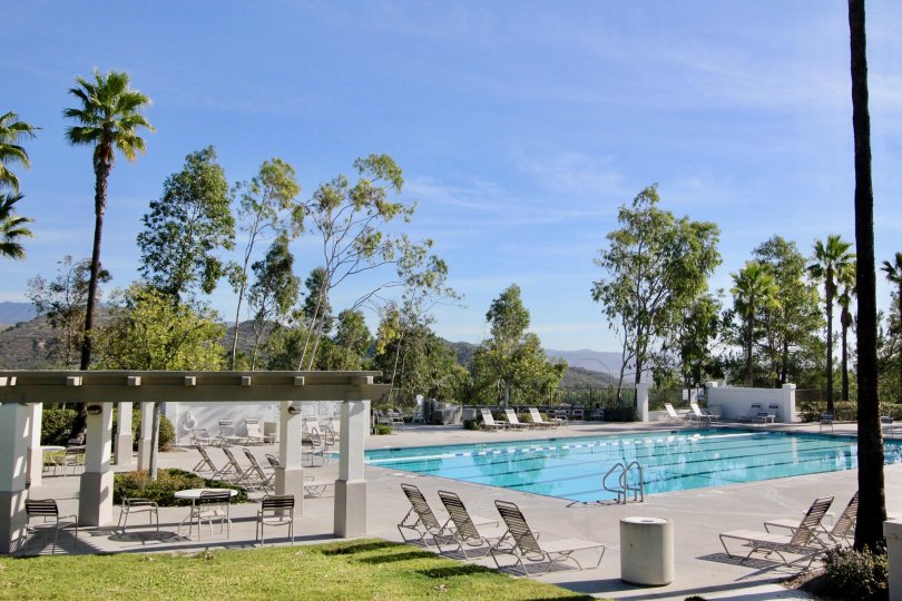 Lots of trees and a pool in Ballantree in Rancho Santa Margarita, CA