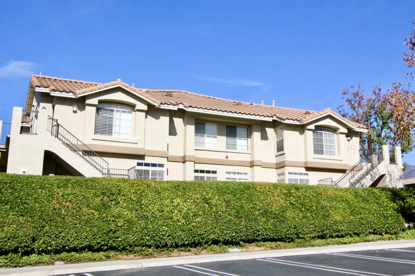 Green hedges and blue sky at Belflora in Rancho Santa Margarita, CA
