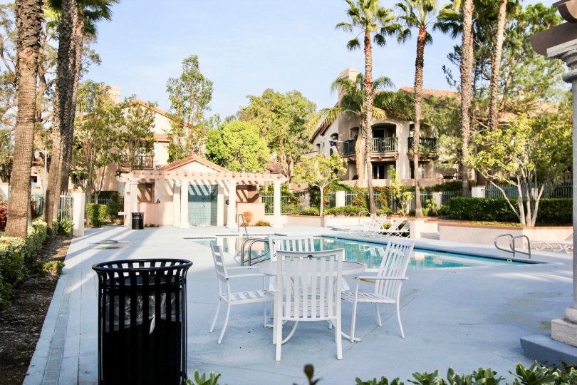 Cool looking swimming pool with sitting and palm trees around in Bella Ventana of Rancho Santa Margarita