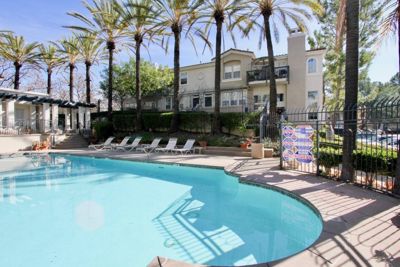 A sunny day by a Cierra Del Lago pool with apartments and palm trees behind it