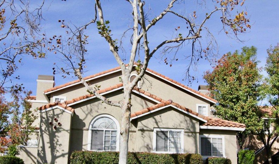 beautiful spacious house in las flores home community in rancho santa margarita california