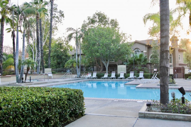 Poolside view of Serabrisa in Rancho Santa Margarita, California.