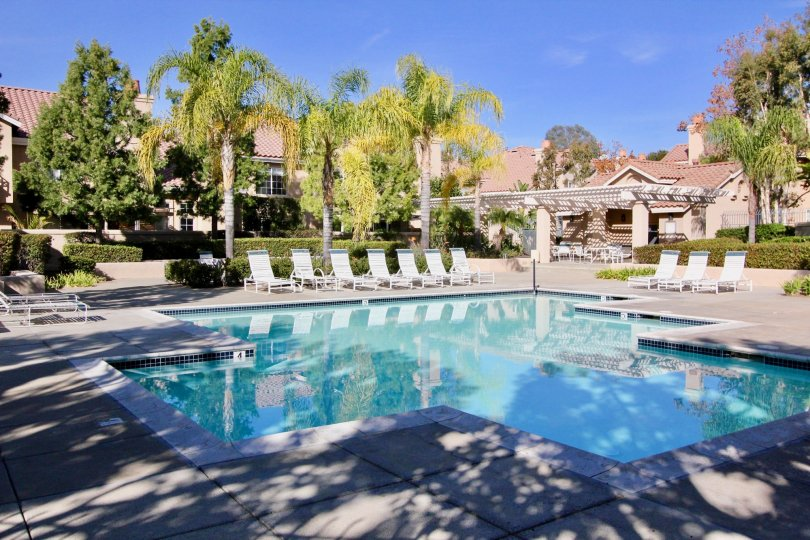 Nice swimming pool at centre with sitting and palm trees around in Sonoma Court of Rancho Santa Margarita
