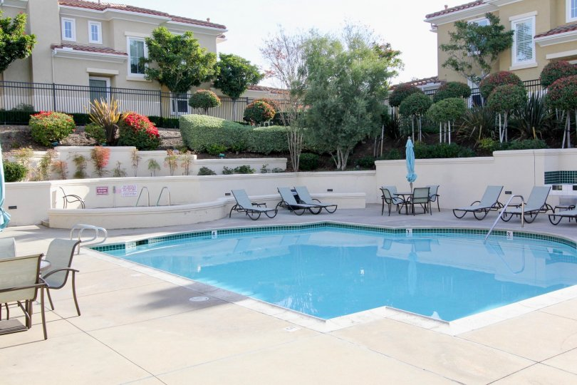 Private swimming in a sunken area for privacy with well maintained hedges and trees with ample pool deck space at Terracina