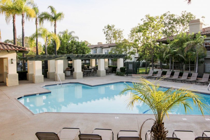 A view of the pool and lounge chairs and trees in the Tijeras Creek Villas community in Rancho Santa Margarita, CA