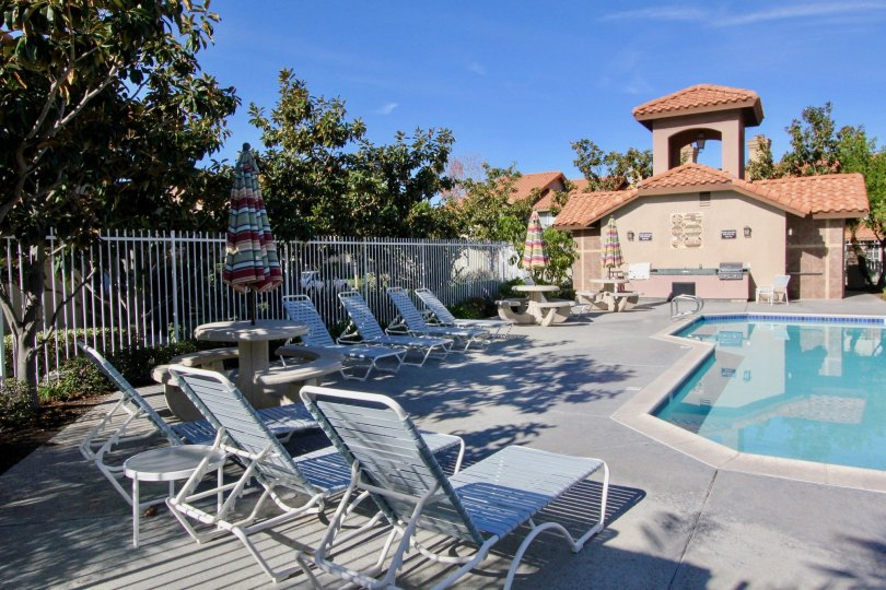 Community pool surrounded by lounge chairs in Vista La Cuesta.